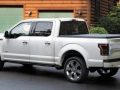2016 Ford F150 rear side